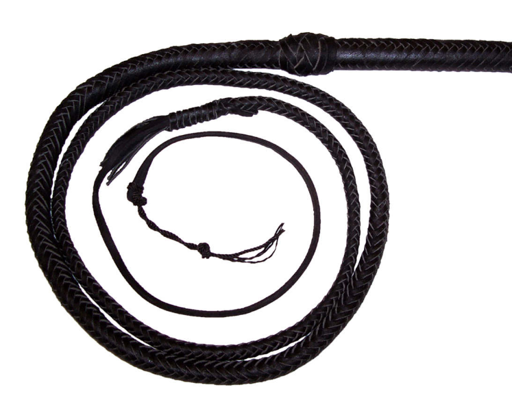 Bull Whip by Wicked Rabbit